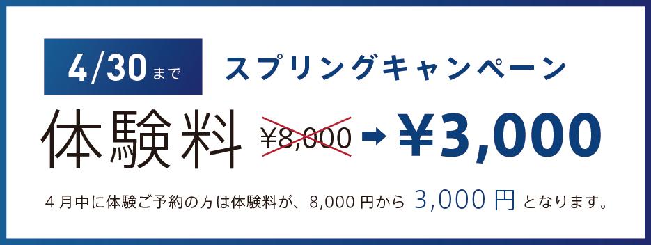 体験料3000円